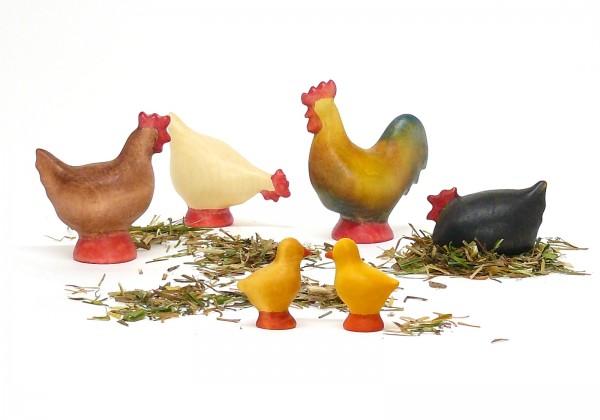 Der kleine Hühnerhof