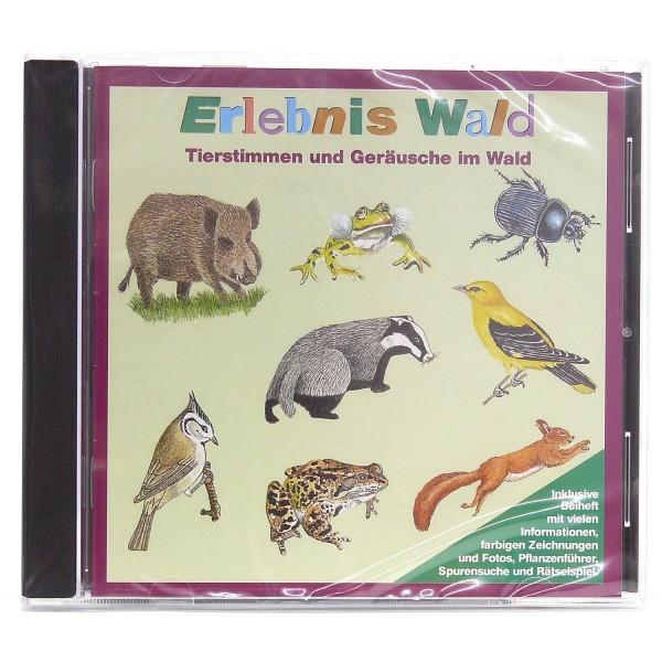 CD mit Stimmen aus dem Wald