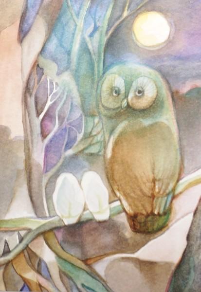 Postkarten-Set Im Wald
